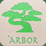 arbor34-1024x1024